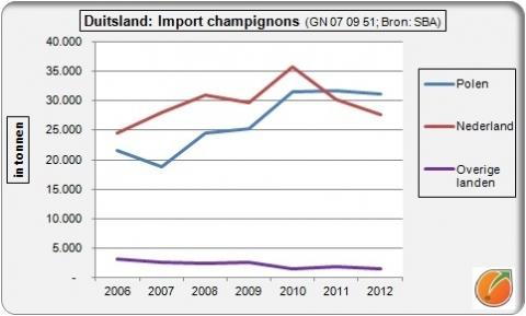 Duitse import champignons: Polen verder uitgelopen op Nederland