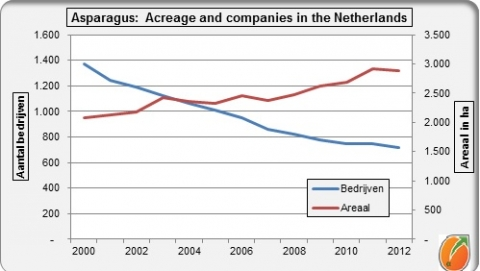 Netherlands asparagus acreage and companies