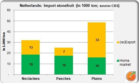 import netherlands stonfruit