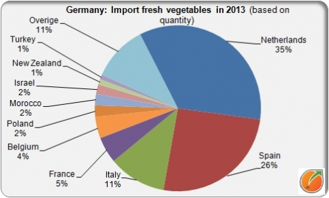 German import fresh vegetables in 2013