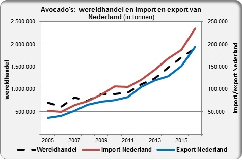 Avocado trade worldwide