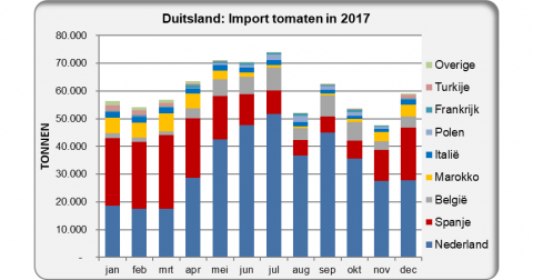 Germany: Import tomatoes