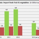 Import fresh fruit and vegetables in Russia