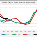 Brazil export fresh fruit and vegetables by month